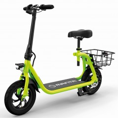 12 inch E-scooter FLINSTON